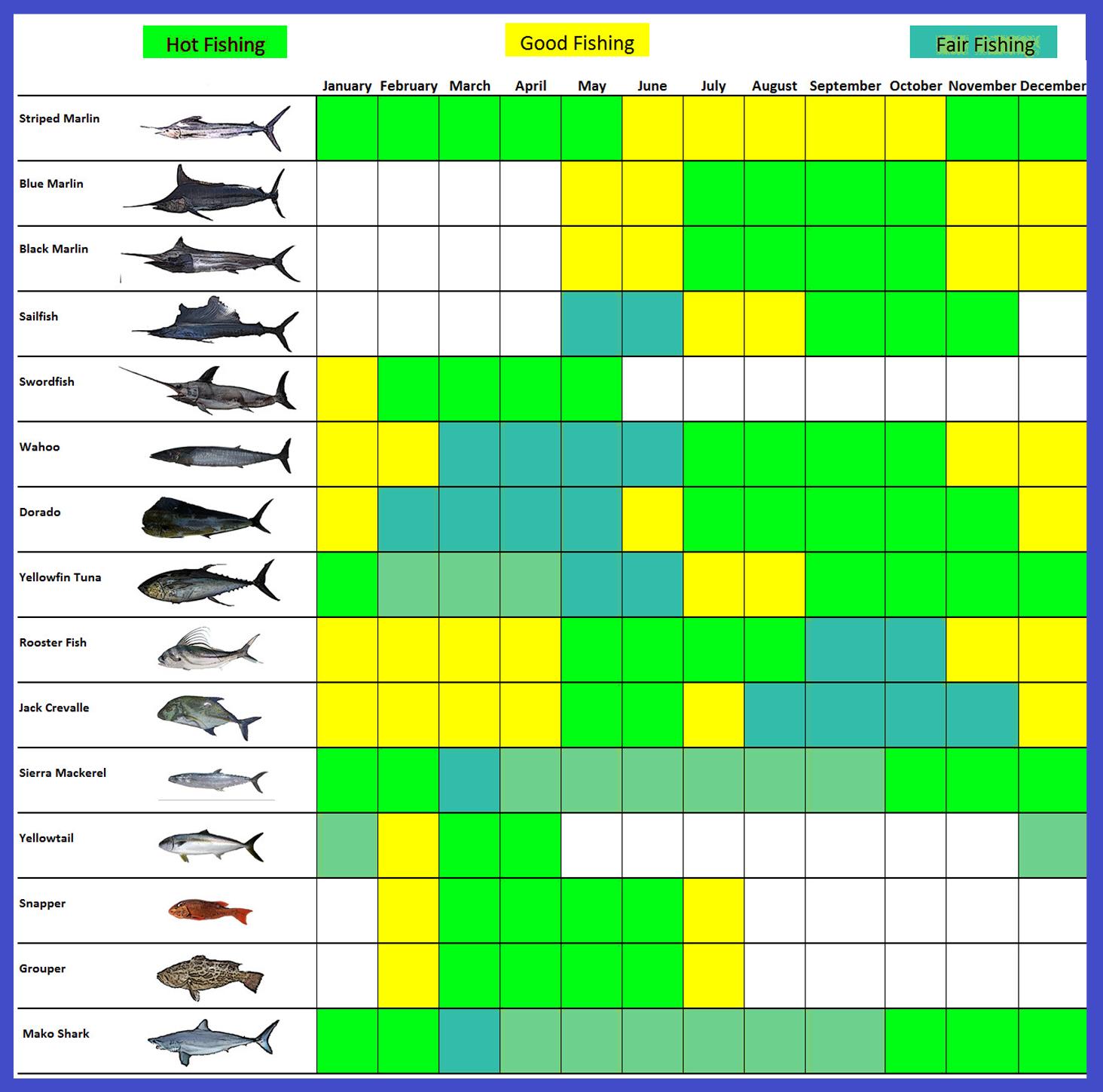 Los Cabos Fishing Calendar
