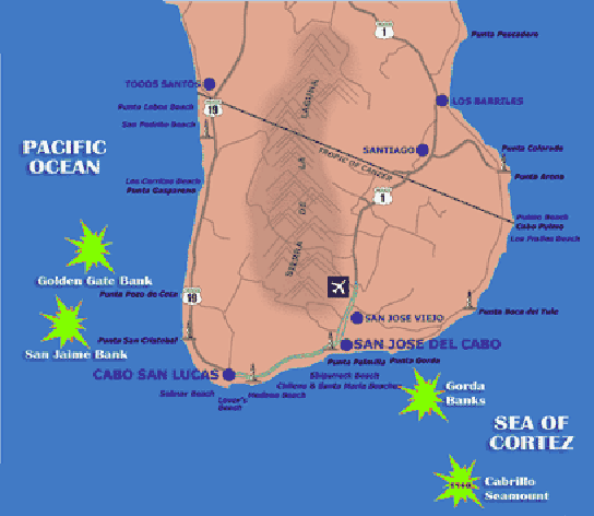 Los Cabos Hot Fishing spots